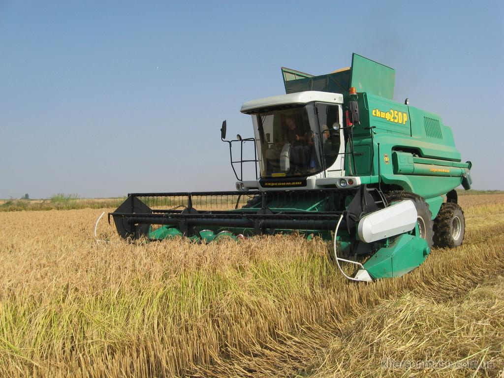 Украина приступила к уборке ранних зерновых, заявляют в МинагропродеУкраїна приступила до збирання ранніх зернових, заявляють у Мінагропроді